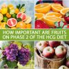 HOW IMPORTANT ARE FRUITS ON PHASE 2 OF THE HCG DIET