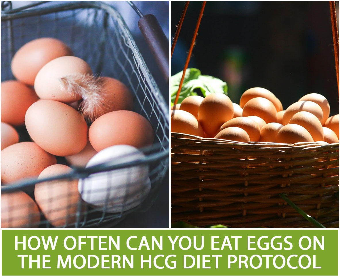 HOW OFTEN CAN YOU EAT EGGS ON THE MODERN HCG DIET PROTOCOL?